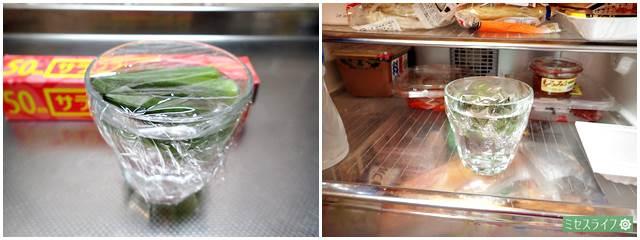 ラップを覆って冷蔵庫へ
